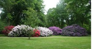 Rhododendronpark_Bremen_14-05-09